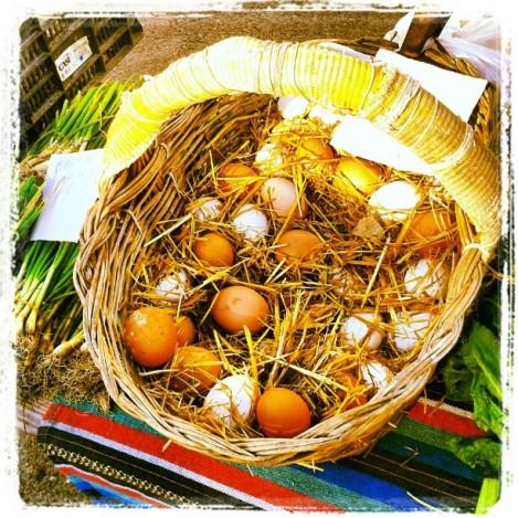 Los colores del mercado, Cabo de Gata